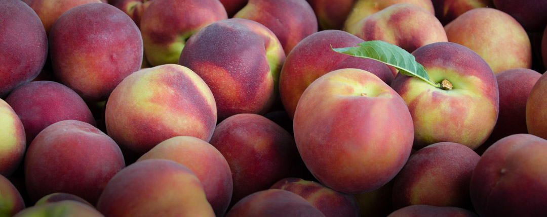 We take the greatest care in selecting our peaches