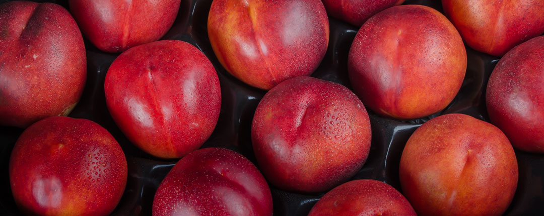 Only the highest quality nectarines are chosen